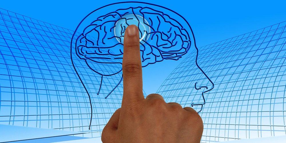 Imunitet s mozgom